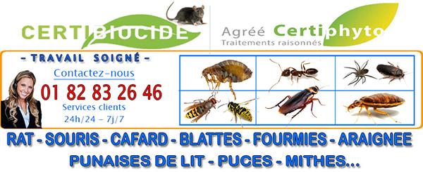 Deratisation Nanteuil les Meaux 77100